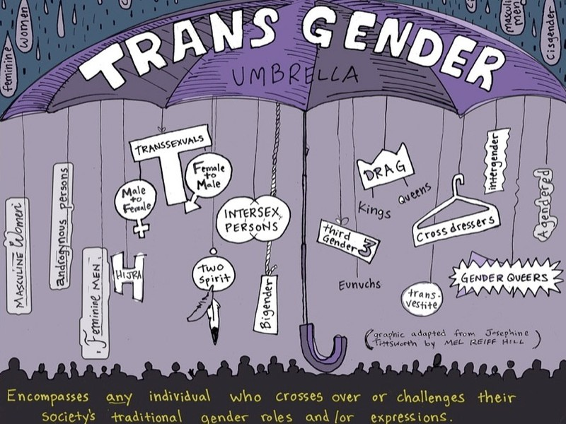 File:Trans umbrella.jpg